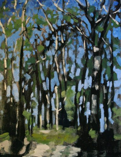 Alyson May - Landscape – Tall Trees. oil on canvas, 275w x 375h