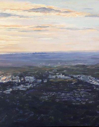 Alyson May - Looking West. acrylic on marine ply, 60 x 120cm
