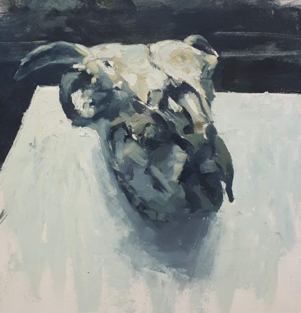 Alyson May - Skull in Grey, oil on canvas, 29 x 30cm